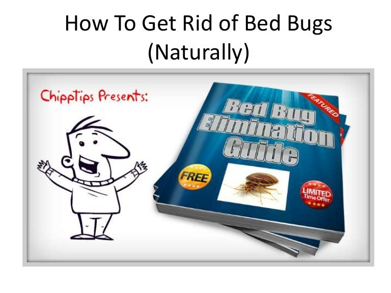 How to Get Rid of Bed Bugs Naturally Learn How to Kill Bed Bugs You