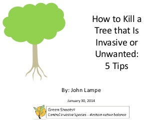 How to Kill a Tree that Is Invasive or Unwanted: 5 Tips