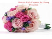 How to pick flowers for every occasion