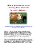 How to Raise Beef Cattle - Claiming Your Share of a Lucrative Industry