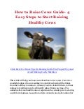 How to Raise Cows Guide- 4 Easy Steps to Start Raising Healthy Cows