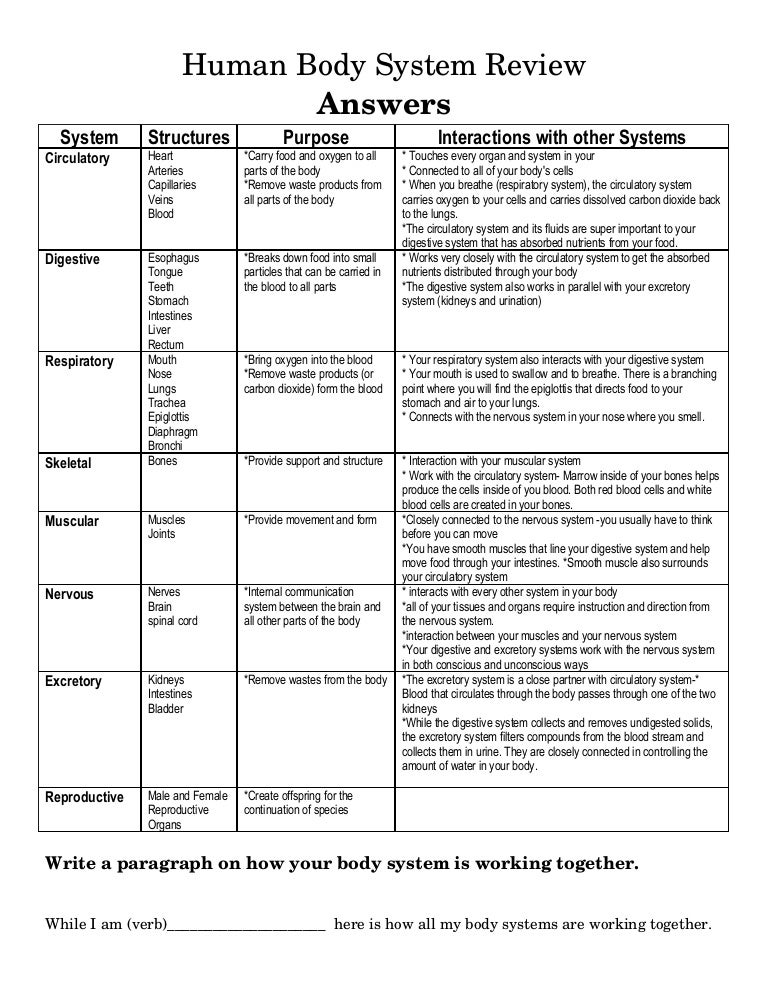 Printables Human Body Systems Worksheets of the body worksheet davezan systems davezan