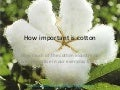 How important is Cotton by Emma Rice