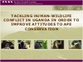 Tackling Human-Wildlife Conflict In Uganda In Order To Improve Attitudes To Ape Conservation