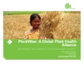 The Global Plant Health Centre: Building a Surveillance and Knowledge System