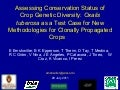 Assessing Conservation Status of Crop Genetic Diversity: Oxalis tuberosa as a Test Case for New Methodologies for Clonally Propagated Crops