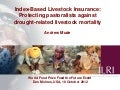 Index-Based Livestock Insurance: Protecting pastoralists against drought-related livestock mortality