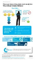 Role of the Chief Data Office Infographic by IBM