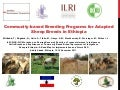 Community-based breeding programs for adapted sheep breeds in Ethiopia