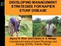 Developing management strategies for Napier stunt disease