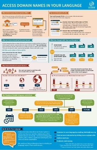IDN Access Domain Names Infographic English