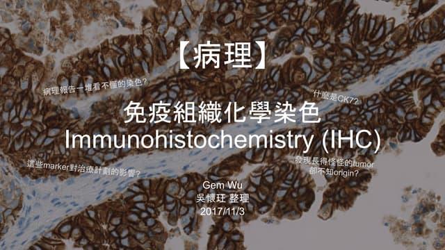 病理-IHC免疫組織染色