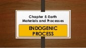 Earth Materials and Processes : ENDOGENIC PROCESS