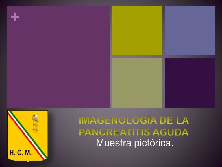 Imagenologia de la PA muestra pictorica