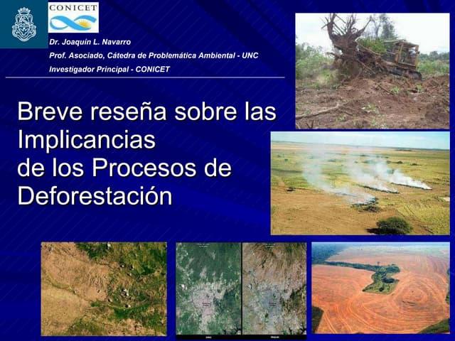 Implicancias de la deforestación