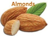 Import of Almonds (EXIM) export-Import