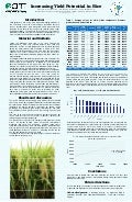 Poster35: Increasing yield potential in rice
