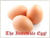 The Incredible Egg by Brandon and Dustin Gaddes