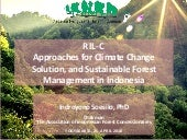 RIL-C approaches for climate change solution, and sustainable forest management in Indonesia
