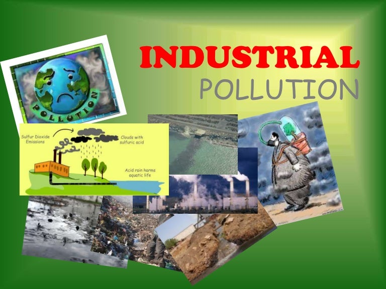 nfcl factory industrial waste and pollution survey at kakinada essay