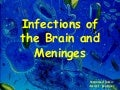 Brain Infections 1
