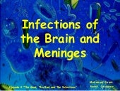 Brain Infections2