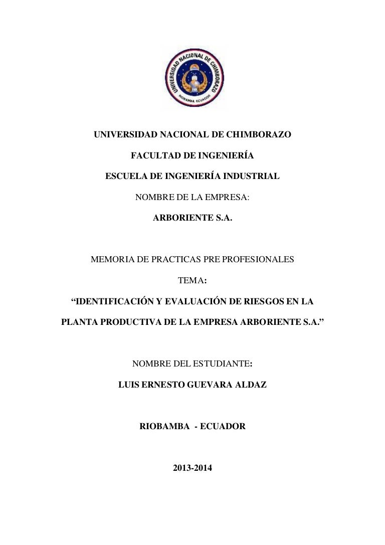 Informe de practicas pre profesionales de seguridad industrial