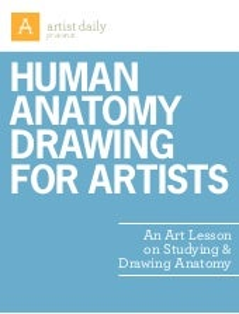 Iniciación drawing anatomy