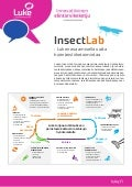 Insect lab palvelukuvaus