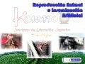 Inseminación artificial y Reproducción Animal