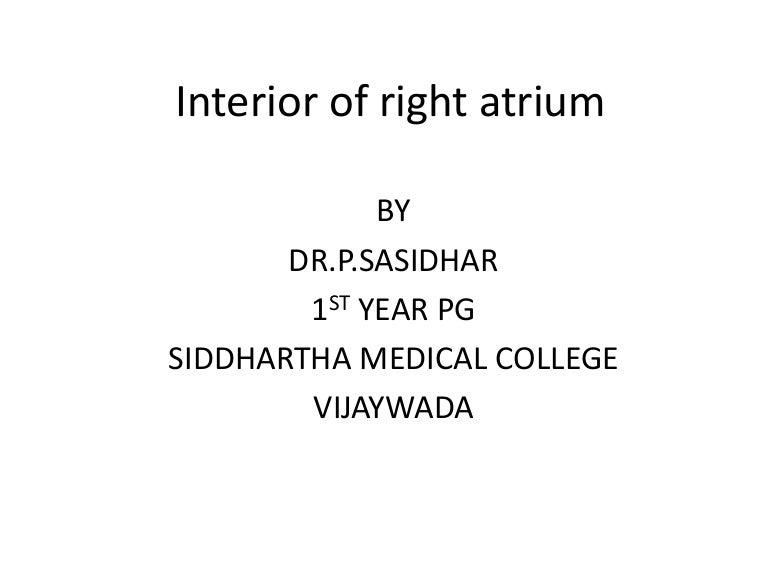 Interior of right atrium