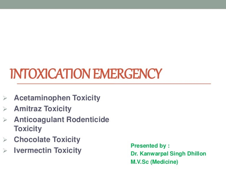 Intoxication emergency (amitraz, chocolate, ivermectin