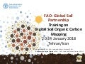 Introduction to the GSP Pillar 4 and the Global Soil Information System