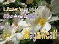 Ir. Maria da Paz - convite
