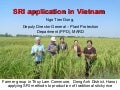 1050 SRI application in Vietnam