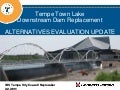 Town Lake Dam Replacement Technology Choices