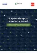 Is Natural Capital a Material Issue