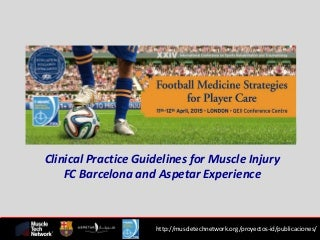 Isokitenic 2015: Clinical Practice Guidelines for Muscle Injury FC Barcelona and Aspetar Experience