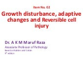 Growth disturbances, Cellular adaptation and reversible cell injury