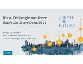 It's a jdk jungle out there - JDK 11 and OpenJDK 11