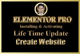I will elementor pro install and create wordpress website with elementor pro