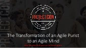 Jessica Soroky - The Transformation of an Agile