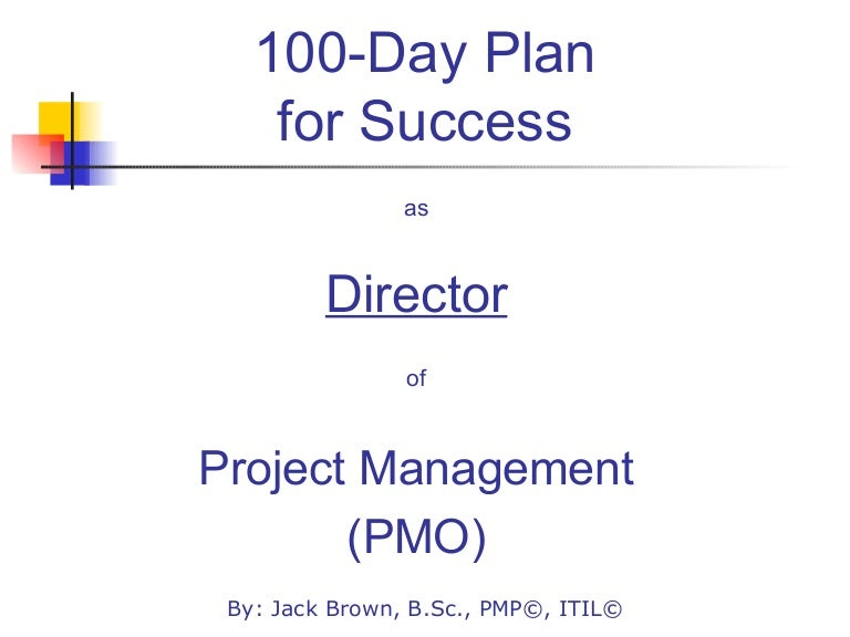 Day Plan For Directing A PMO - 100 day business plan template