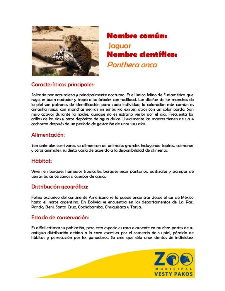 jaguar pdf