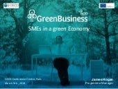 SMEs in a Green Economy