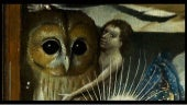 Jheronimus Bosch's Owls 2