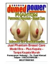 Jual phantom breast care model bra