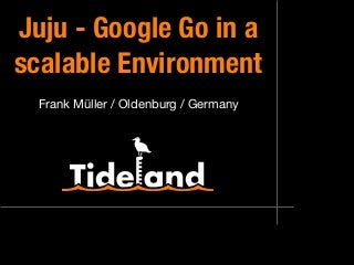 Juju - Google Go in a scalable Environment