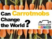 Can Carrotmobs Change the world?