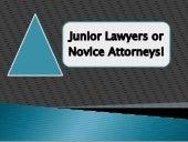 Junior lawyers or novice attorneys   Irs Attorney